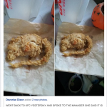 Fried Rat Served To Customer At KFC